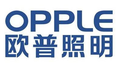 欧普照明为全资子公司合计提供不超过5吸波材料.73亿元担保吸波材料